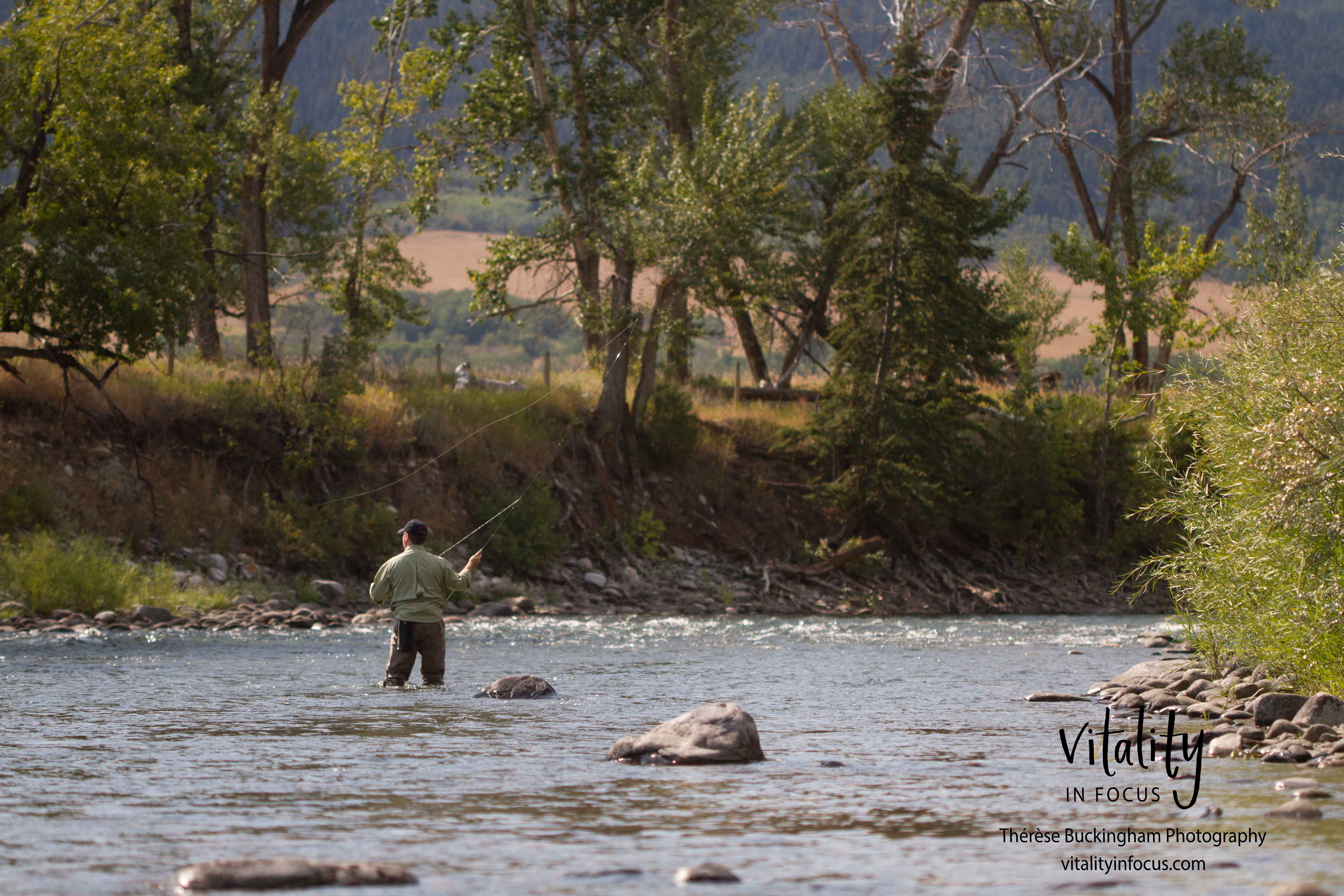Fisherman on the Gallatin River